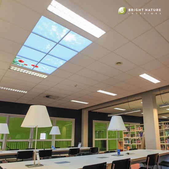 Wolkenfoto's met verlichting, geluid en geurbeleving  voor systeemplafonds