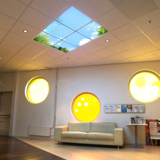 IMG_8485-Edit-Plafondverbeelding-Systeemplafond-Wachtkamer-2400px-S