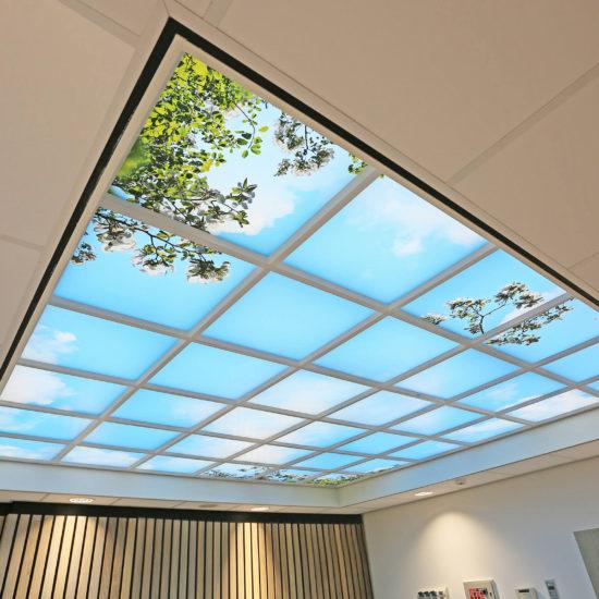 Radboud IVF - Plafond entree - JR9A2128-2400-S