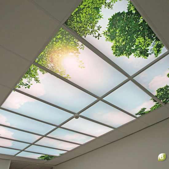 Suspended Ceiling Daylight and Sound - Bright Nature Interiors-1024pxTiny